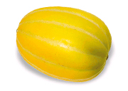 korean melon