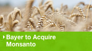Bayer to acquire Monsanto